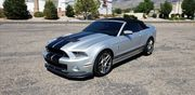 2014 Ford Mustang GT 500