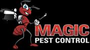 Magic Pest - Gilbert Pest Control